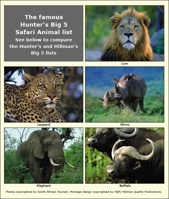 Mon Safari Big Five